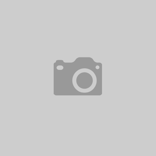 Pension chien et chat Puy-De-Dôme et allier